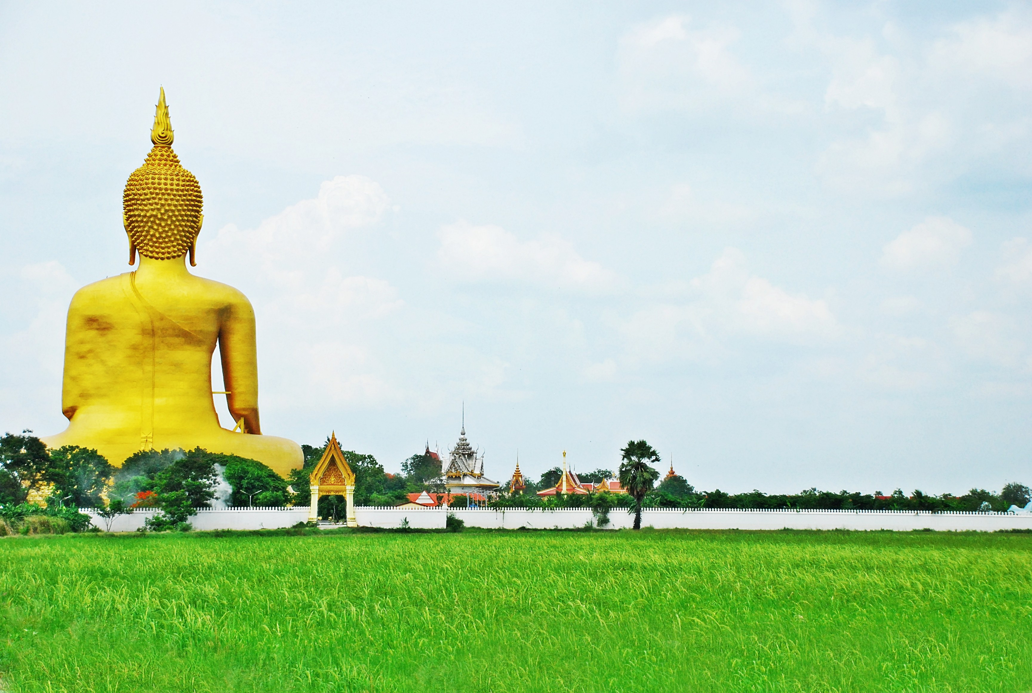 Paddy fields and Buddhism