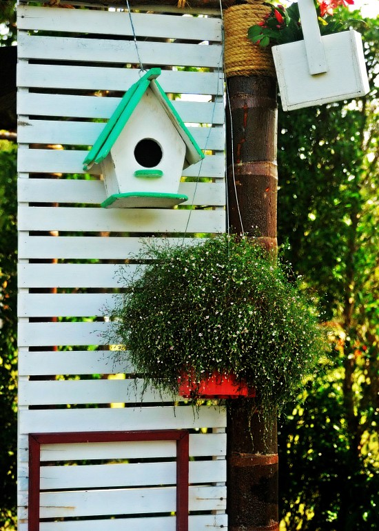 Bird house and wood walls